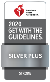 Get With The Guidelines-Stroke Silver